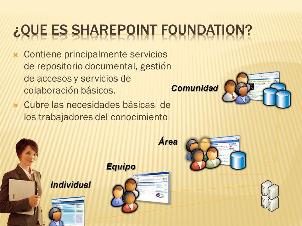 Comunidad Área Equipo Individual Contiene principalmente servicios de repositorio documental, gestión de accesos y servicios de colaboración básicos.