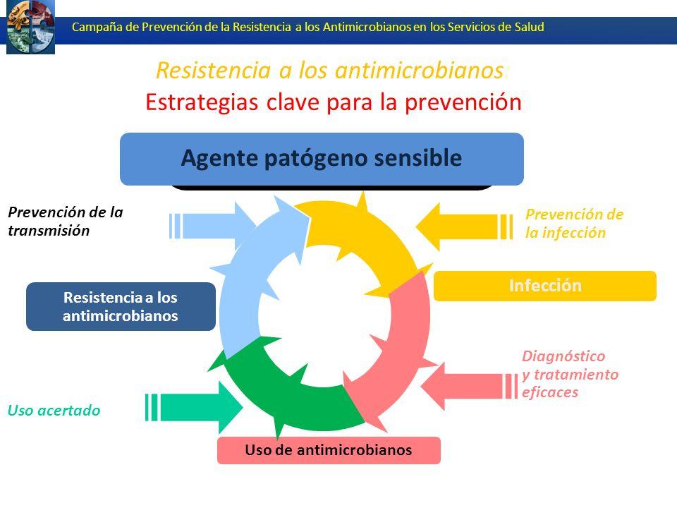 Resistencia a los antimicrobianos: Estrategias clave para la prevención Campaña de Prevención de la Resistencia a los Antimicrobianos en los Servicios