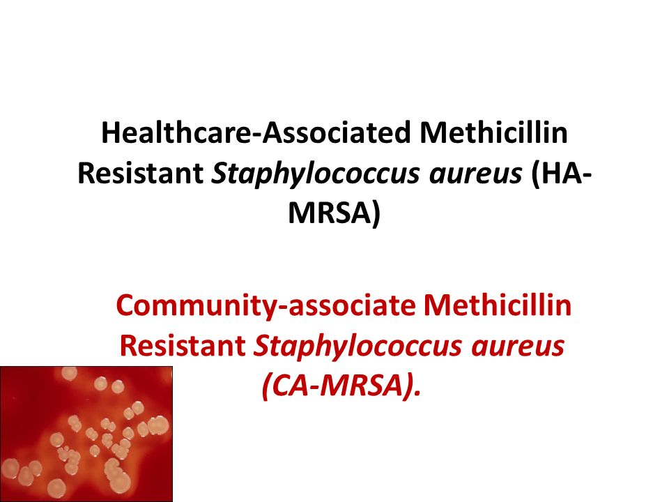 Healthcare-Associated Methicillin Resistant Staphylococcus aureus (HA- MRSA) Community-associate Methicillin Resistant Staphylococcus aureus (CA-MRSA)