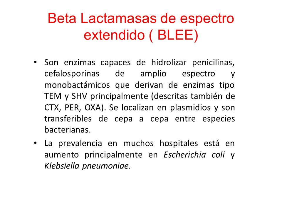 Beta Lactamasas de espectro extendido ( BLEE) Son enzimas capaces de hidrolizar penicilinas, cefalosporinas de amplio espectro y monobactámicos que de