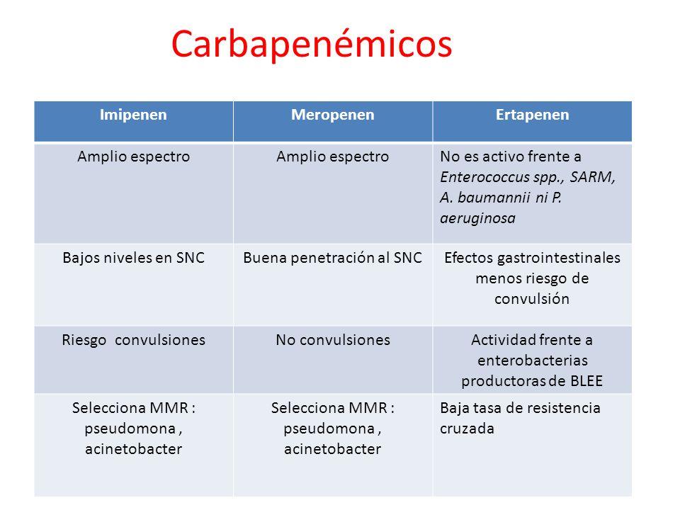 Carbapenémicos ImipenenMeropenenErtapenen Amplio espectro No es activo frente a Enterococcus spp., SARM, A. baumannii ni P. aeruginosa Bajos niveles e