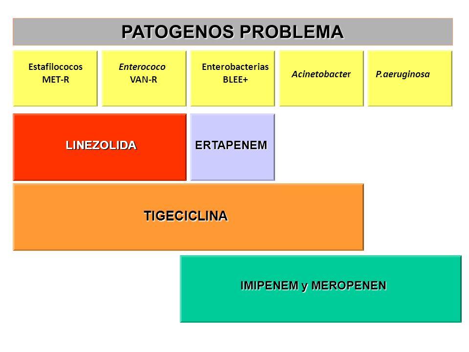 Estafilococos MET-R Enterococo VAN-R Enterobacterias BLEE+ AcinetobacterP.aeruginosa LINEZOLIDAERTAPENEM TIGECICLINA IMIPENEM y MEROPENEN PATOGENOS PR