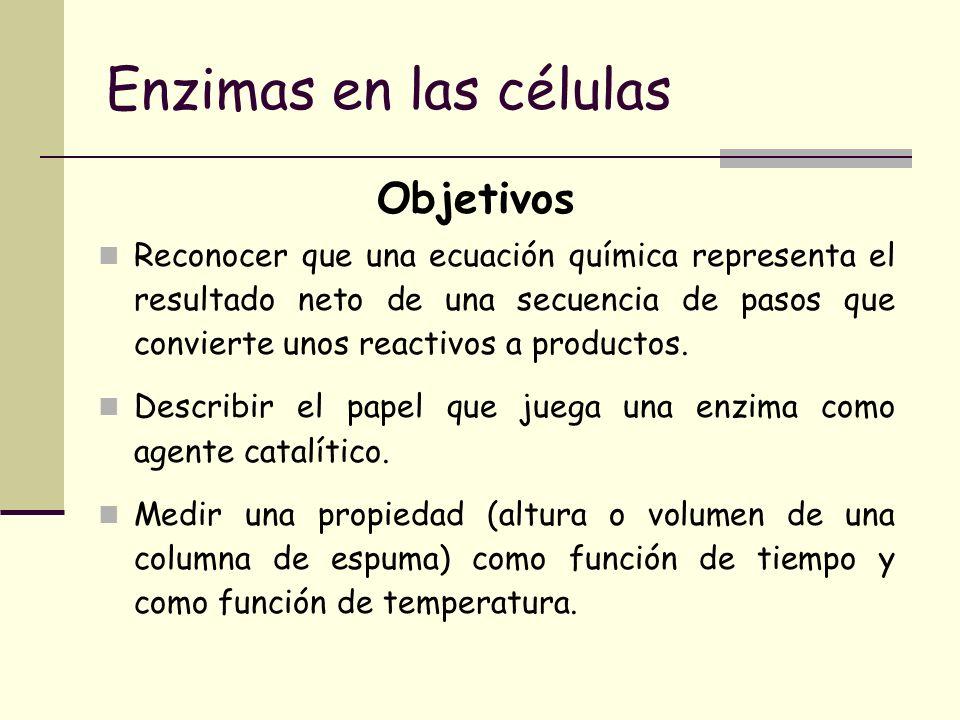 Enzimas en las células Reconocer que una ecuación química representa el resultado neto de una secuencia de pasos que convierte unos reactivos a produc