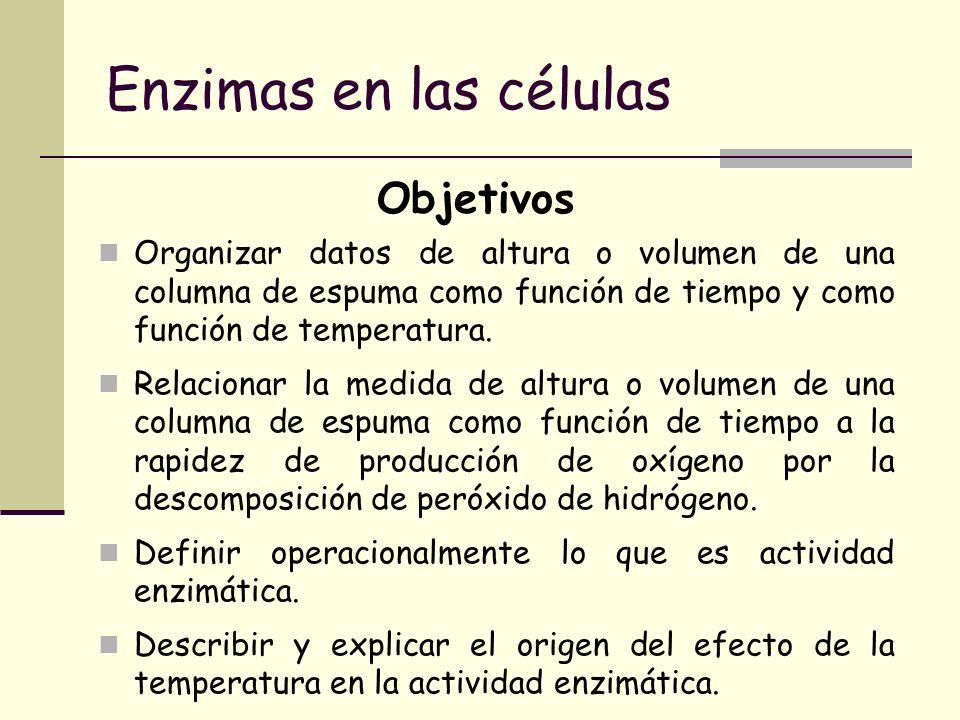 Enzimas en las células Organizar datos de altura o volumen de una columna de espuma como función de tiempo y como función de temperatura. Relacionar l