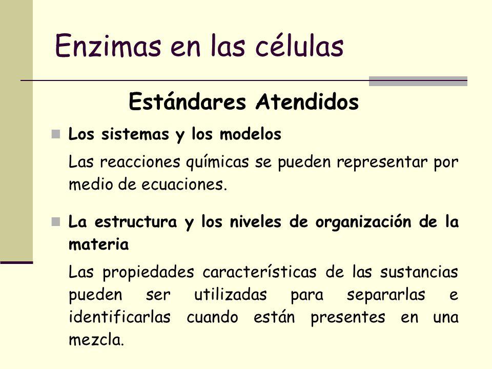 Enzimas en las células Estándares Atendidos Los sistemas y los modelos Las reacciones químicas se pueden representar por medio de ecuaciones. La estru