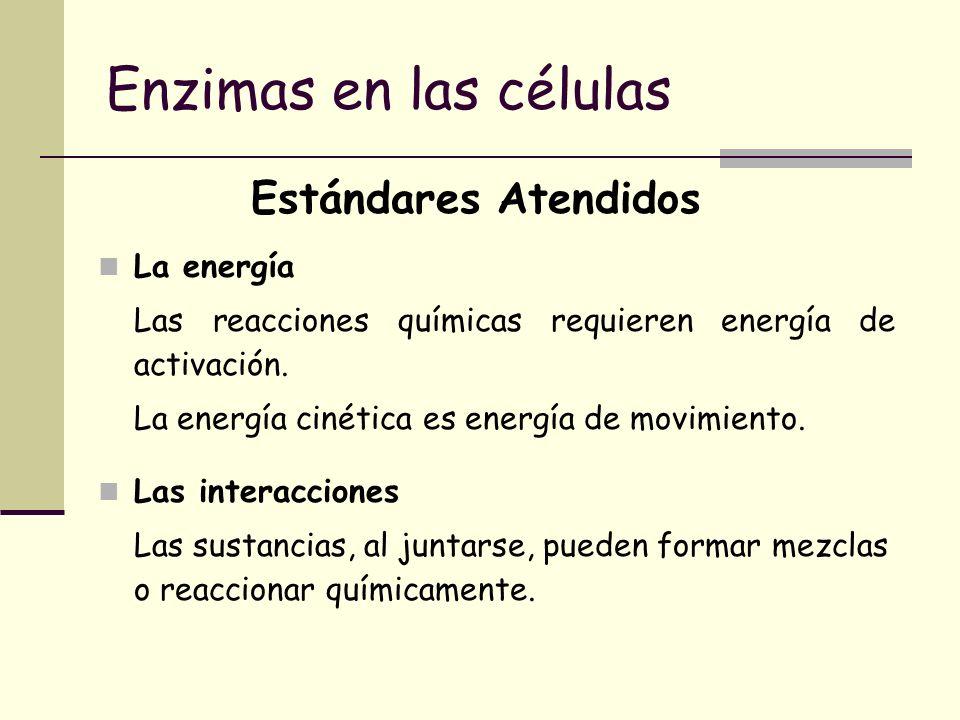 Enzimas en las células Estándares Atendidos La energía Las reacciones químicas requieren energía de activación. La energía cinética es energía de movi
