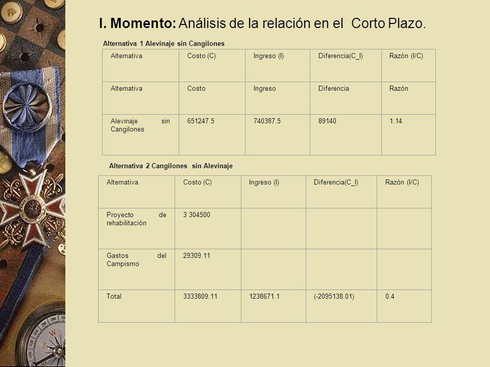 I. Momento: Análisis de la relación en el Corto Plazo. Alternativa 1 Alevinaje sin Cangilones AlternativaCosto (C)Ingreso (I)Diferencia(C_I)Razón (I/C