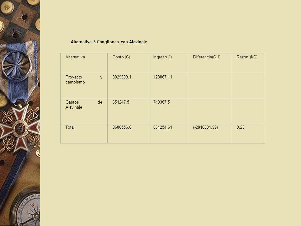 Alternativa 3 Cangilones con Alevinaje AlternativaCosto (C)Ingreso (I)Diferencia(C_I)Razón (I/C) Proyecto y campismo 3029309.1123867.11 Gastos de Alev