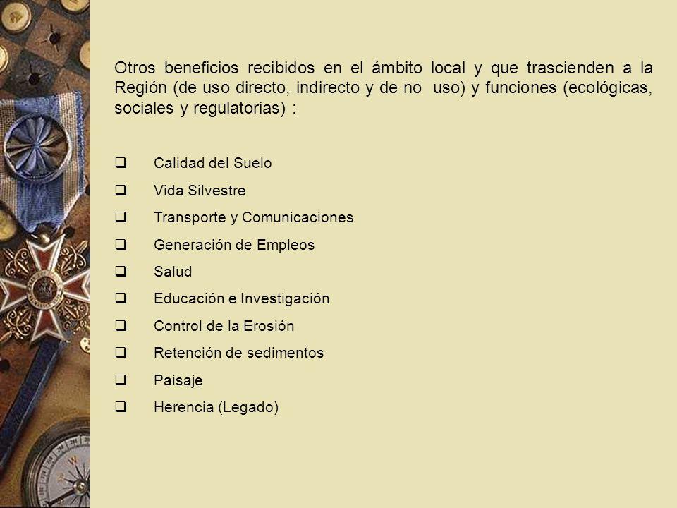 Otros beneficios recibidos en el ámbito local y que trascienden a la Región (de uso directo, indirecto y de no uso) y funciones (ecológicas, sociales