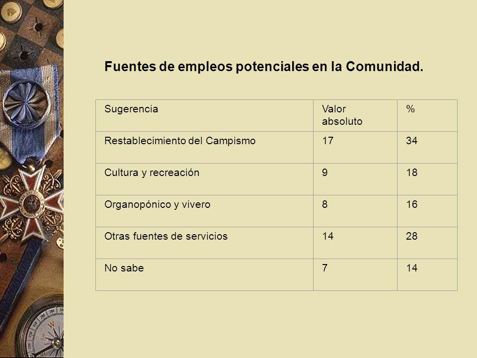 Fuentes de empleos potenciales en la Comunidad. SugerenciaValor absoluto % Restablecimiento del Campismo1734 Cultura y recreación918 Organopónico y vi