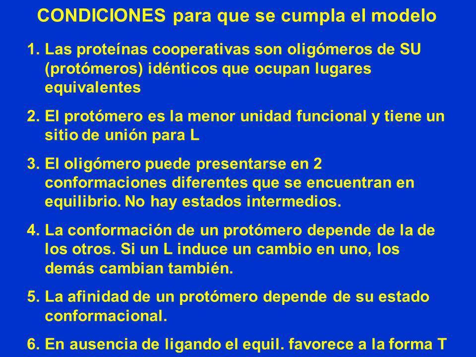 CONDICIONES para que se cumpla el modelo 1.Las proteínas cooperativas son oligómeros de SU (protómeros) idénticos que ocupan lugares equivalentes 2.El