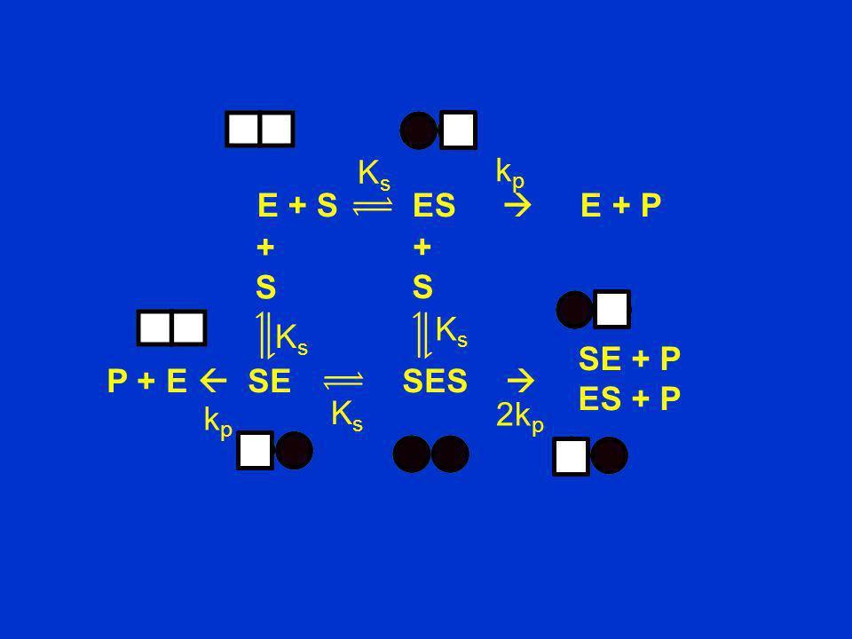 P + E SE SES E + S ES E + P kpkp KsKs +S+S kpkp K s +S+S KsKs KsKs SE + P ES + P 2k p