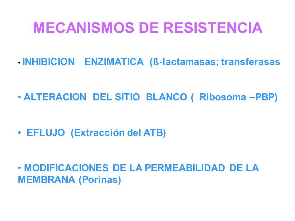 MECANISMOS DE RESISTENCIA INHIBICION ENZIMATICA (ß-lactamasas; transferasas ALTERACION DEL SITIO BLANCO ( Ribosoma –PBP) EFLUJO (Extracción del ATB) M