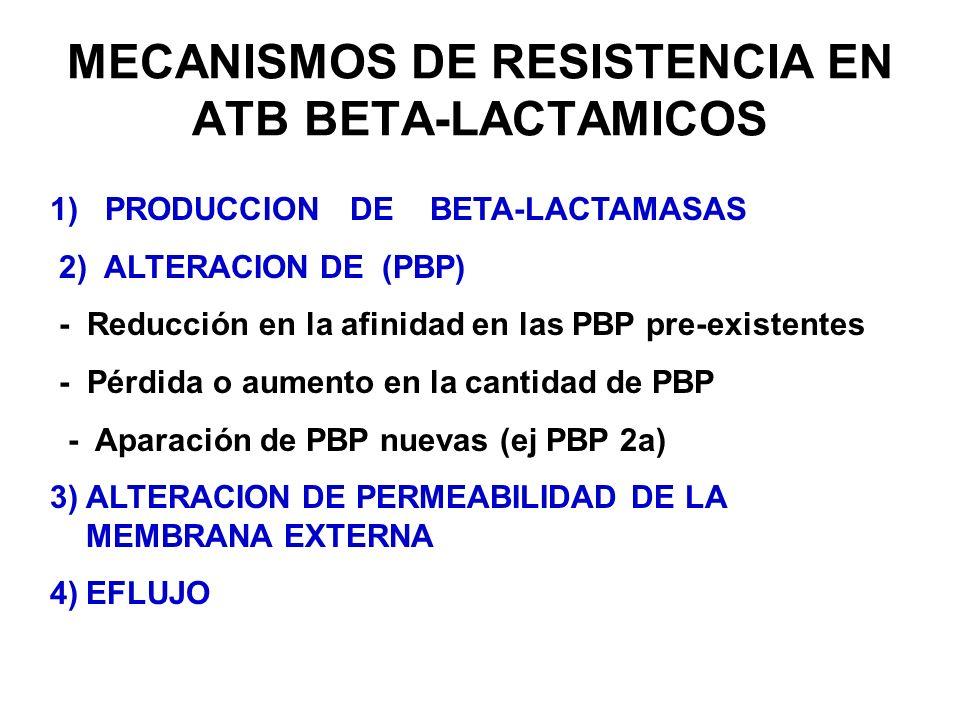 MECANISMOS DE RESISTENCIA EN ATB BETA-LACTAMICOS 1) PRODUCCION DE BETA-LACTAMASAS 2) ALTERACION DE (PBP) - Reducción en la afinidad en las PBP pre-exi