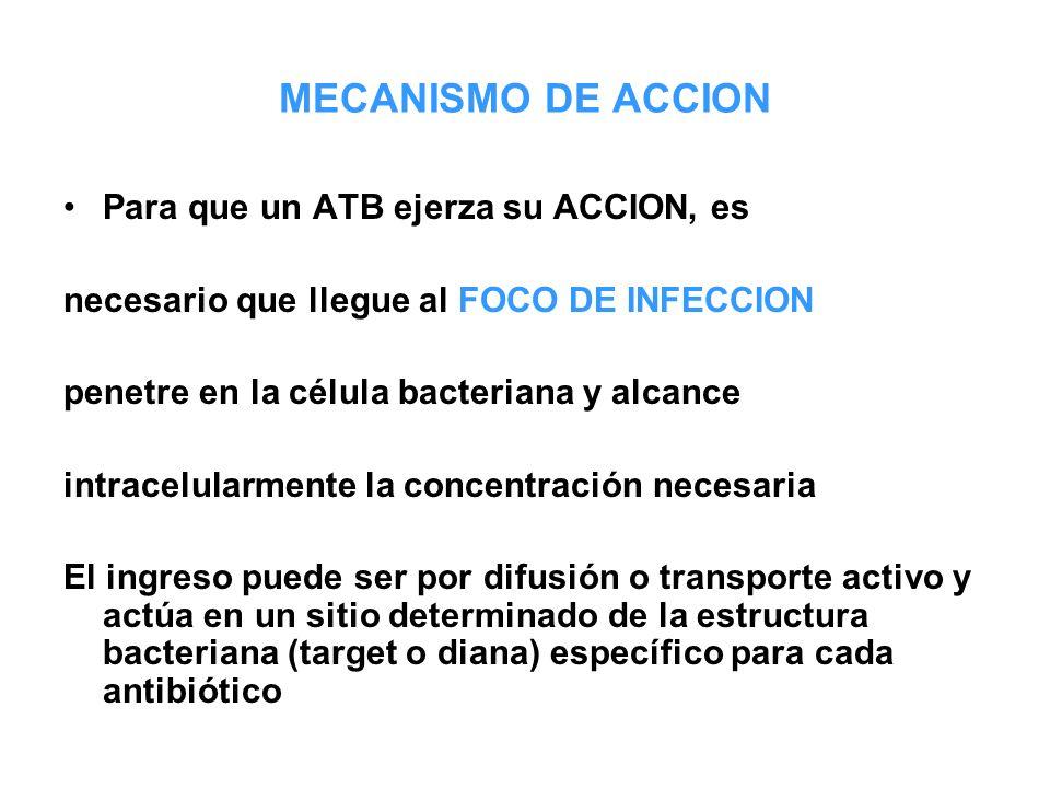 MECANISMO DE ACCION Para que un ATB ejerza su ACCION, es necesario que llegue al FOCO DE INFECCION penetre en la célula bacteriana y alcance intracelu