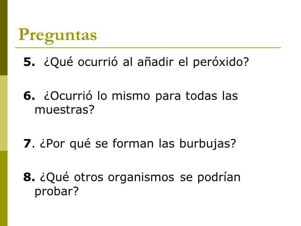 Preguntas 5. ¿Qué ocurrió al añadir el peróxido? 6. ¿Ocurrió lo mismo para todas las muestras? 7. ¿Por qué se forman las burbujas? 8. ¿Qué otros organ
