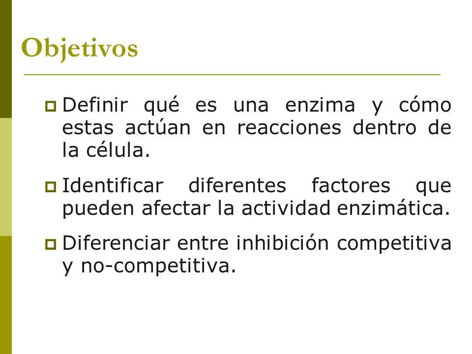 Objetivos Definir qué es una enzima y cómo estas actúan en reacciones dentro de la célula. Identificar diferentes factores que pueden afectar la activ