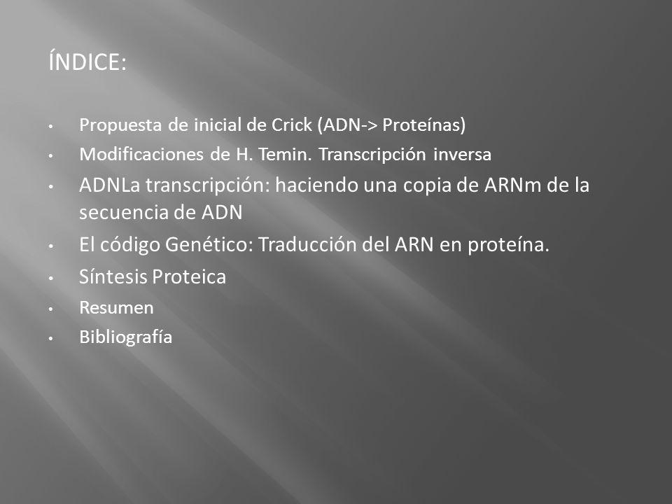 ÍNDICE: Propuesta de inicial de Crick (ADN-> Proteínas) Modificaciones de H. Temin. Transcripción inversa ADNLa transcripción: haciendo una copia de A