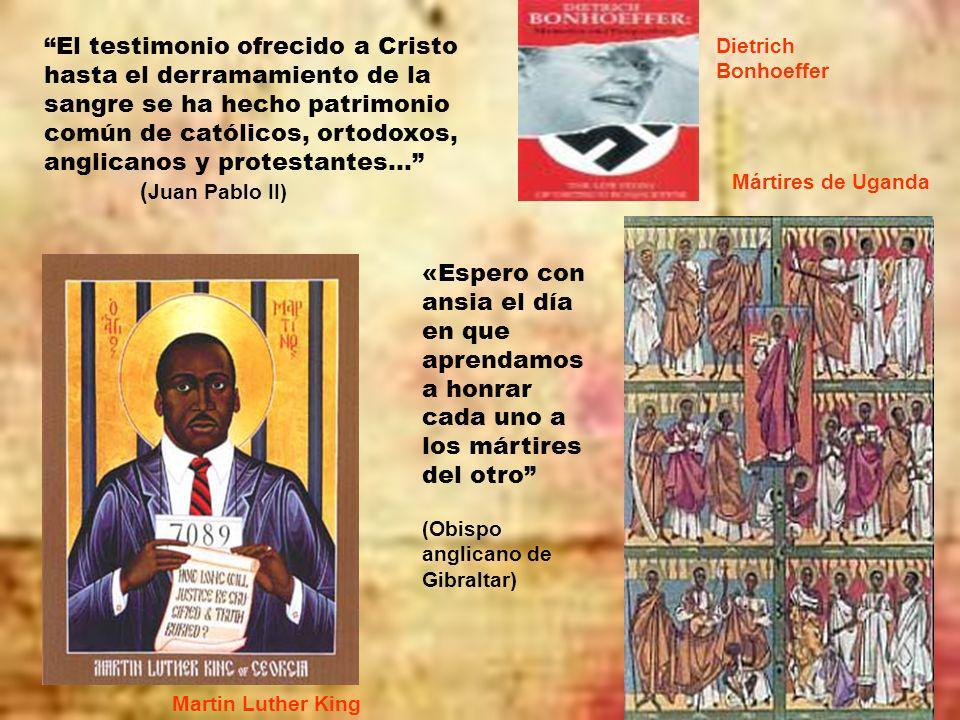 . El testimonio ofrecido a Cristo hasta el derramamiento de la sangre se ha hecho patrimonio común de católicos, ortodoxos, anglicanos y protestantes… ( Juan Pablo II) «Espero con ansia el día en que aprendamos a honrar cada uno a los mártires del otro (Obispo anglicano de Gibraltar) Dietrich Bonhoeffer Mártires de Uganda Martin Luther King