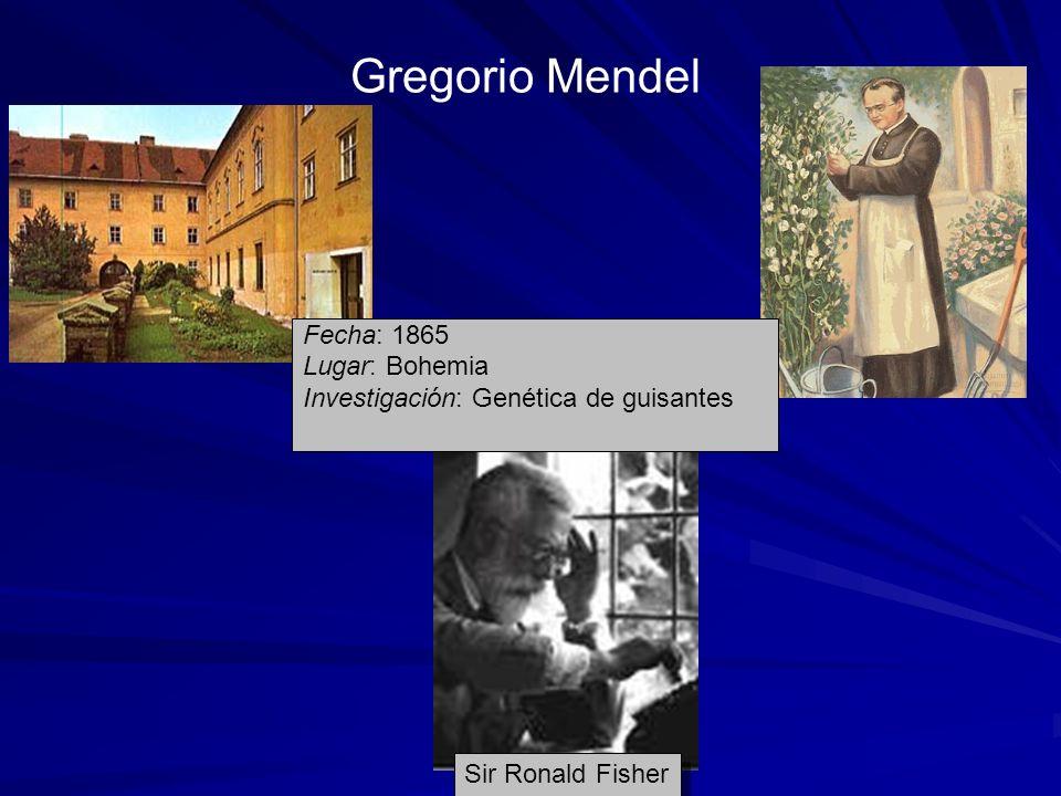 Gregorio Mendel Sir Ronald Fisher Fecha: 1865 Lugar: Bohemia Investigación: Genética de guisantes
