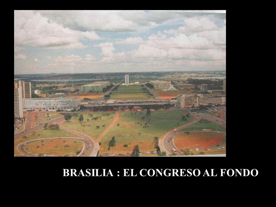 BRASILIA : EL CONGRESO AL FONDO