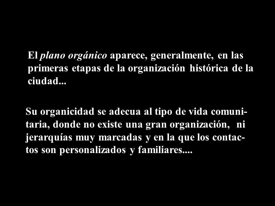 El plano orgánico aparece, generalmente, en las primeras etapas de la organización histórica de la ciudad... Su organicidad se adecua al tipo de vida