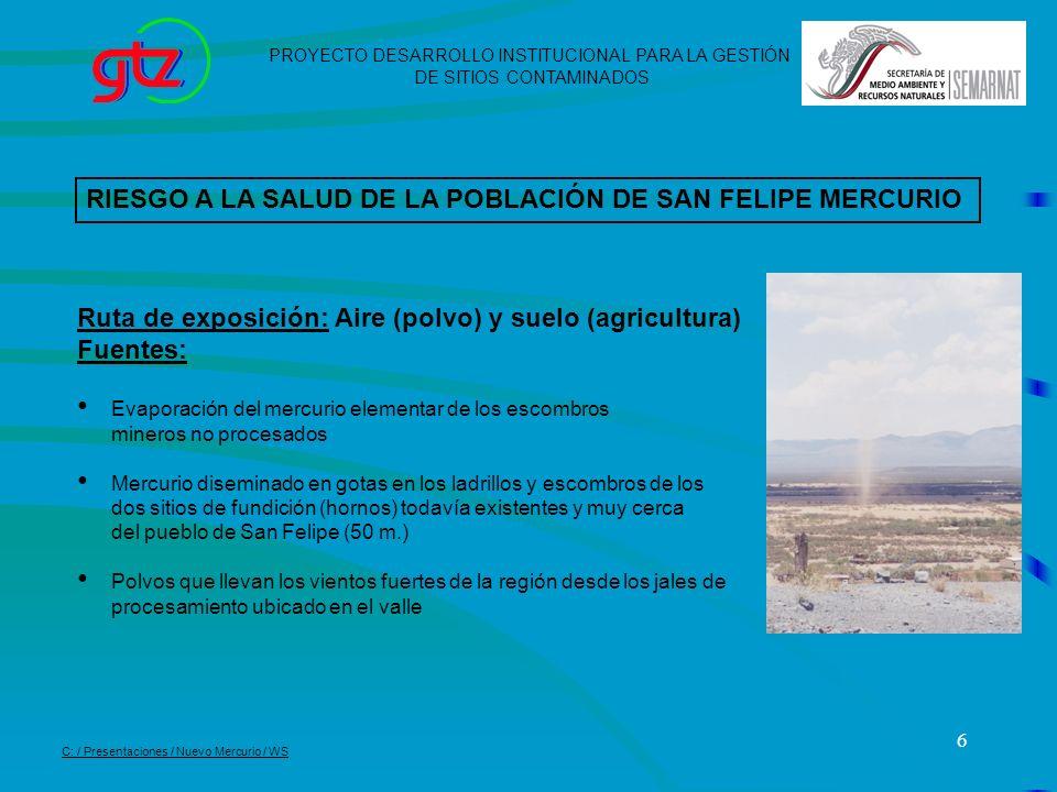 6 PROYECTO DESARROLLO INSTITUCIONAL PARA LA GESTIÓN DE SITIOS CONTAMINADOS C: / Presentaciones / Nuevo Mercurio / WS Ruta de exposición: Aire (polvo)