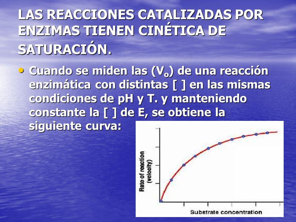 LAS REACCIONES CATALIZADAS POR ENZIMAS TIENEN CINÉTICA DE SATURACIÓN. Cuando se miden las (V o ) de una reacción enzimática con distintas [ ] en las m