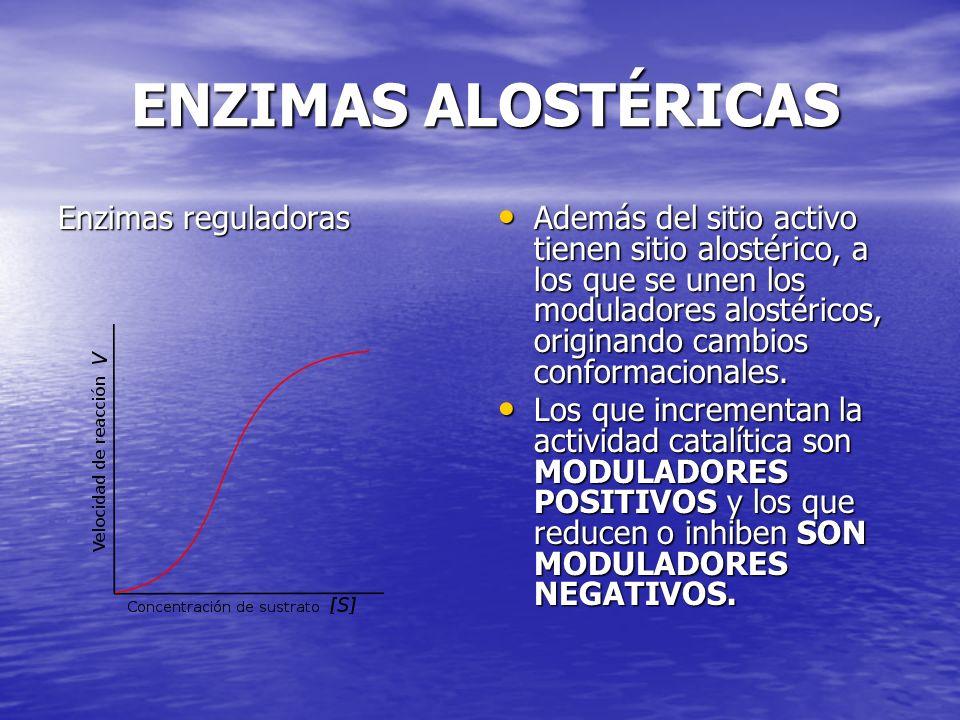 ENZIMAS ALOSTÉRICAS ENZIMAS ALOSTÉRICAS Enzimas reguladoras Además del sitio activo tienen sitio alostérico, a los que se unen los moduladores alostér