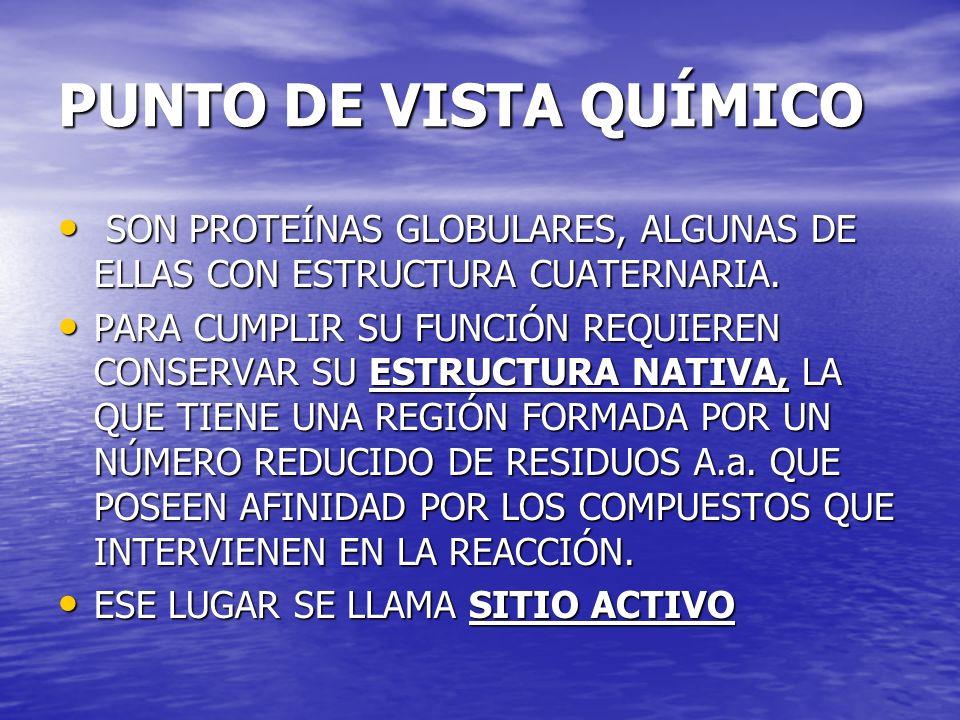 PUNTO DE VISTA QUÍMICO SON PROTEÍNAS GLOBULARES, ALGUNAS DE ELLAS CON ESTRUCTURA CUATERNARIA. SON PROTEÍNAS GLOBULARES, ALGUNAS DE ELLAS CON ESTRUCTUR