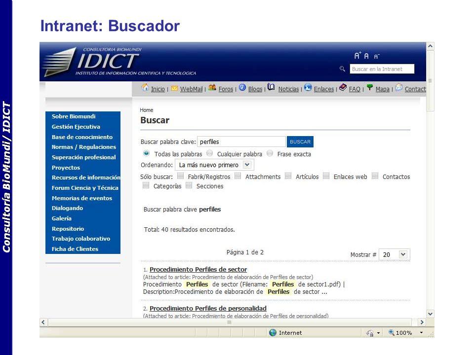 Consultoría BioMundi/ IDICT Intranet: Buscador