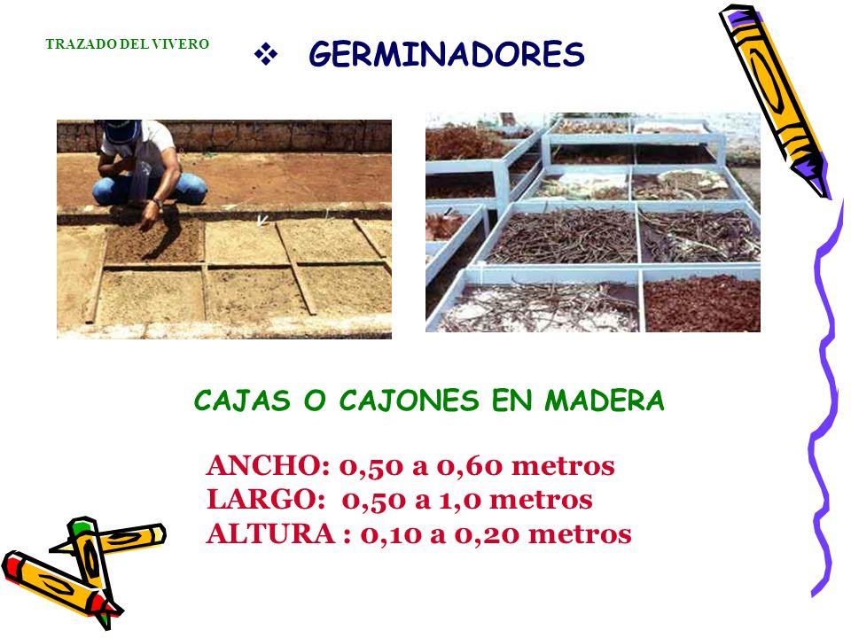 GERMINADORES CAJAS O CAJONES EN MADERA ANCHO: 0,50 a 0,60 metros LARGO: 0,50 a 1,0 metros ALTURA : 0,10 a 0,20 metros TRAZADO DEL VIVERO