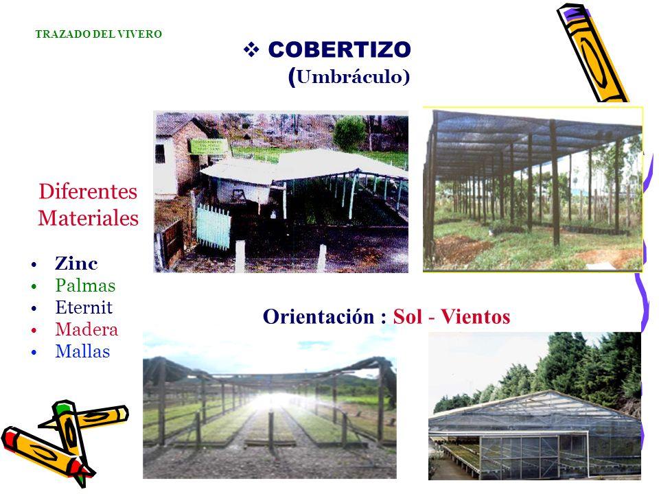 COBERTIZO ( Umbráculo) Diferentes Materiales Zinc Palmas Eternit Madera Mallas TRAZADO DEL VIVERO Orientación : Sol - Vientos