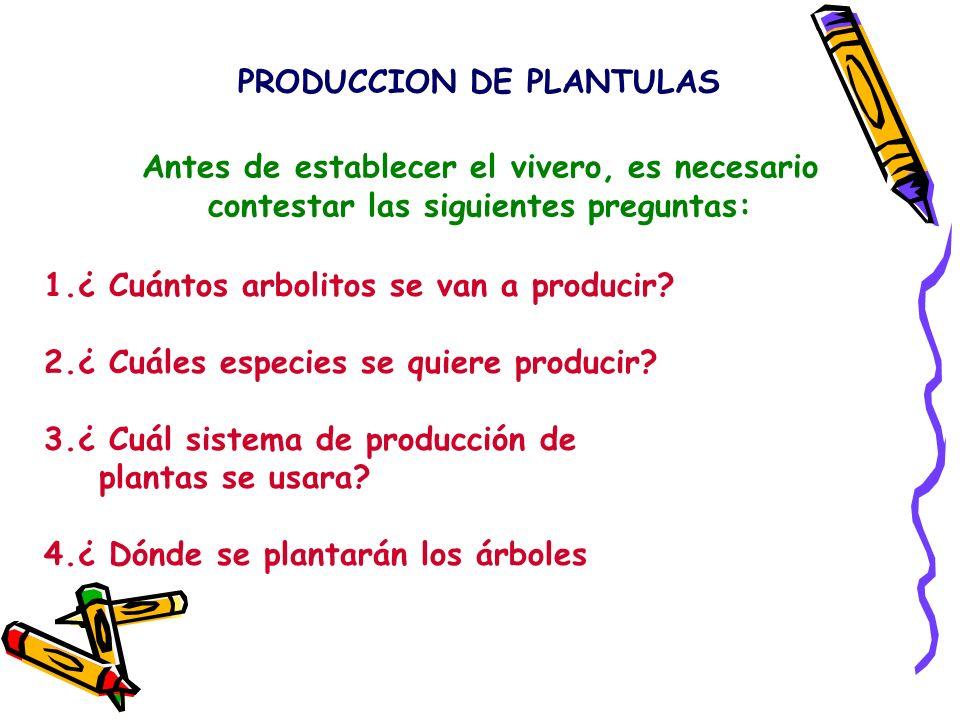 PRODUCCION DE PLANTULAS Antes de establecer el vivero, es necesario contestar las siguientes preguntas: 1.¿ Cuántos arbolitos se van a producir? 2.¿ C