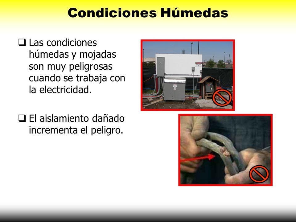 Condiciones Húmedas Las condiciones húmedas y mojadas son muy peligrosas cuando se trabaja con la electricidad. El aislamiento dañado incrementa el pe