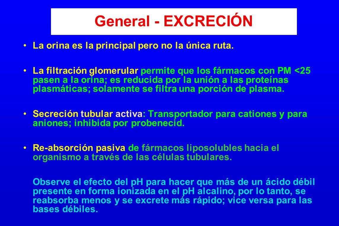 General - EXCRECIÓN La orina es la principal pero no la única ruta. La filtración glomerular permite que los fármacos con PM <25 pasen a la orina; es