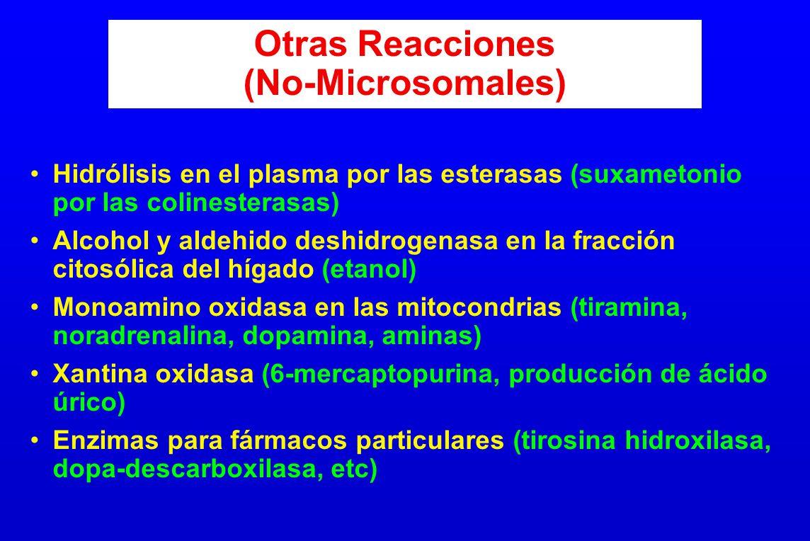 Otras Reacciones (No-Microsomales) Hidrólisis en el plasma por las esterasas (suxametonio por las colinesterasas) Alcohol y aldehido deshidrogenasa en