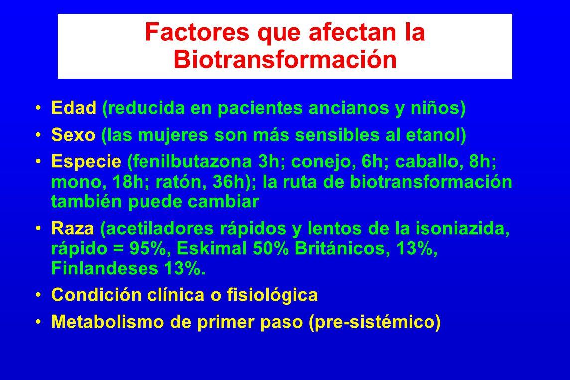 Factores que afectan la Biotransformación Edad (reducida en pacientes ancianos y niños) Sexo (las mujeres son más sensibles al etanol) Especie (fenilb