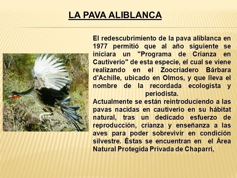 EL COMPLEJO MONUMENTAL DE ZAÑA Se ubica a 46 Km.al Sur Este de Chiclayo, a la vera del río Zaña.