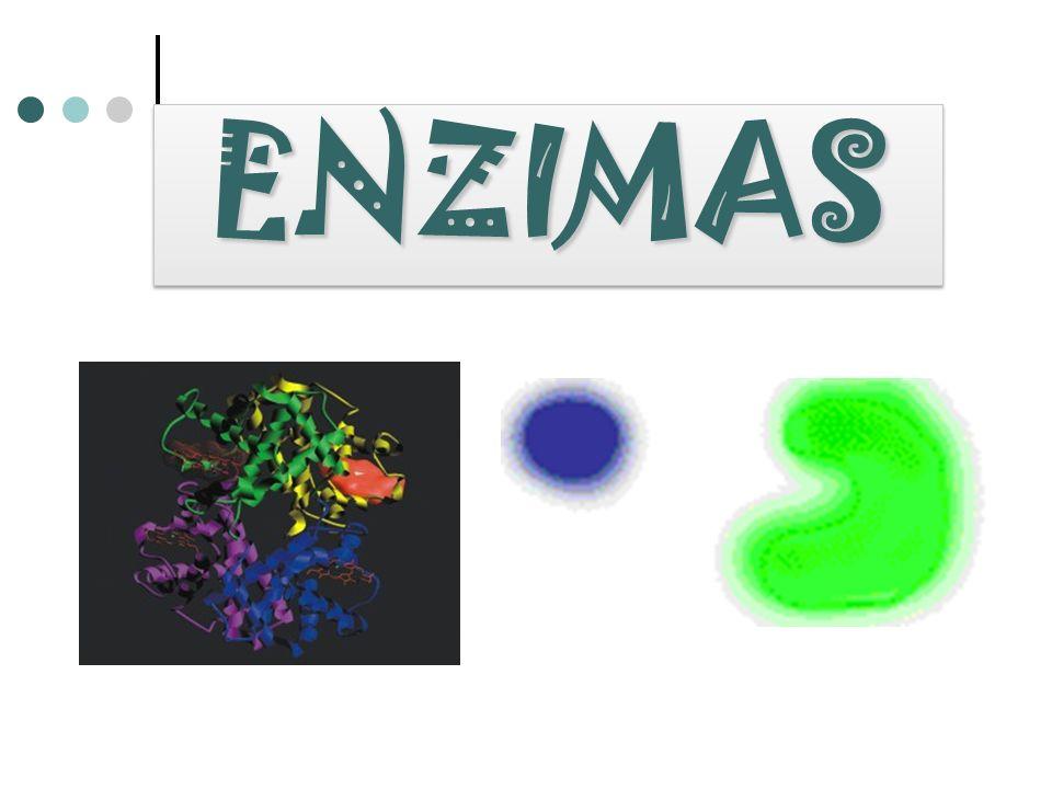 pH Pepsina 1.5 Tripsina 7.7 Catalasa 7.6 Enzima pH óptimo Condiciones que requiere la actividad enzimática La actividad enzimática es eficaz dentro de un rango de pH que depende del tipo de enzima y de su sustrato.