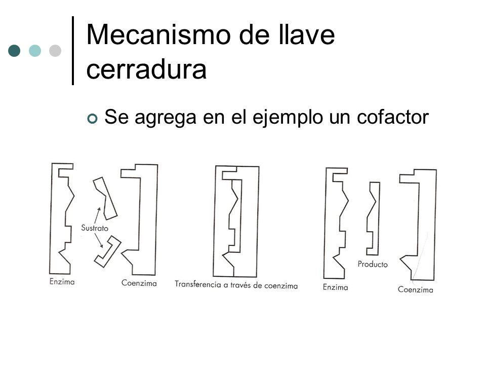 Mecanismo de llave cerradura Se agrega en el ejemplo un cofactor
