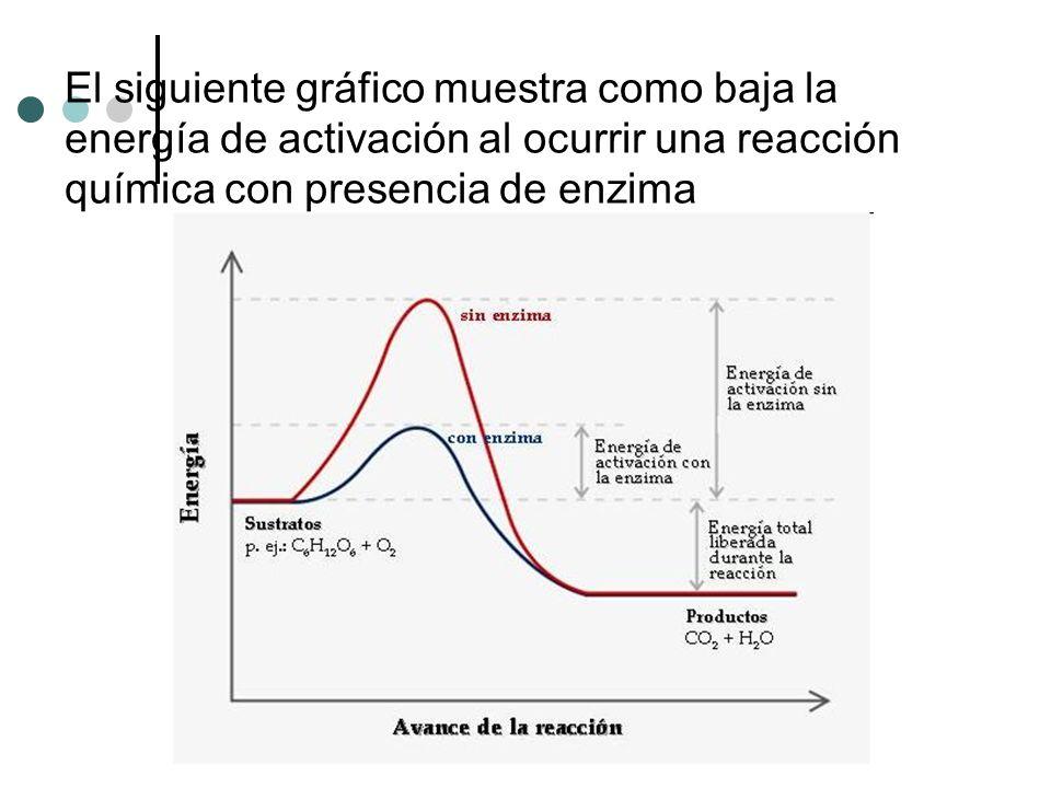 El siguiente gráfico muestra como baja la energía de activación al ocurrir una reacción química con presencia de enzima