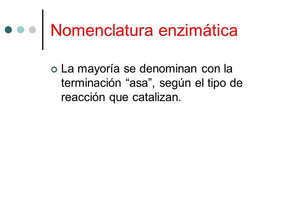Nomenclatura enzimática La mayoría se denominan con la terminación asa, según el tipo de reacción que catalizan.