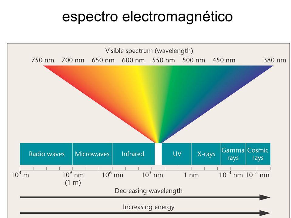 Efectos de la radiación electromagnética