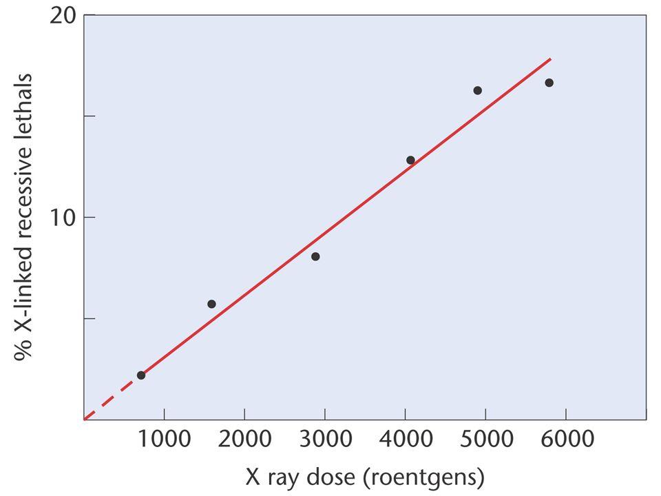 pérdida del emparejamiento específico por luz UV