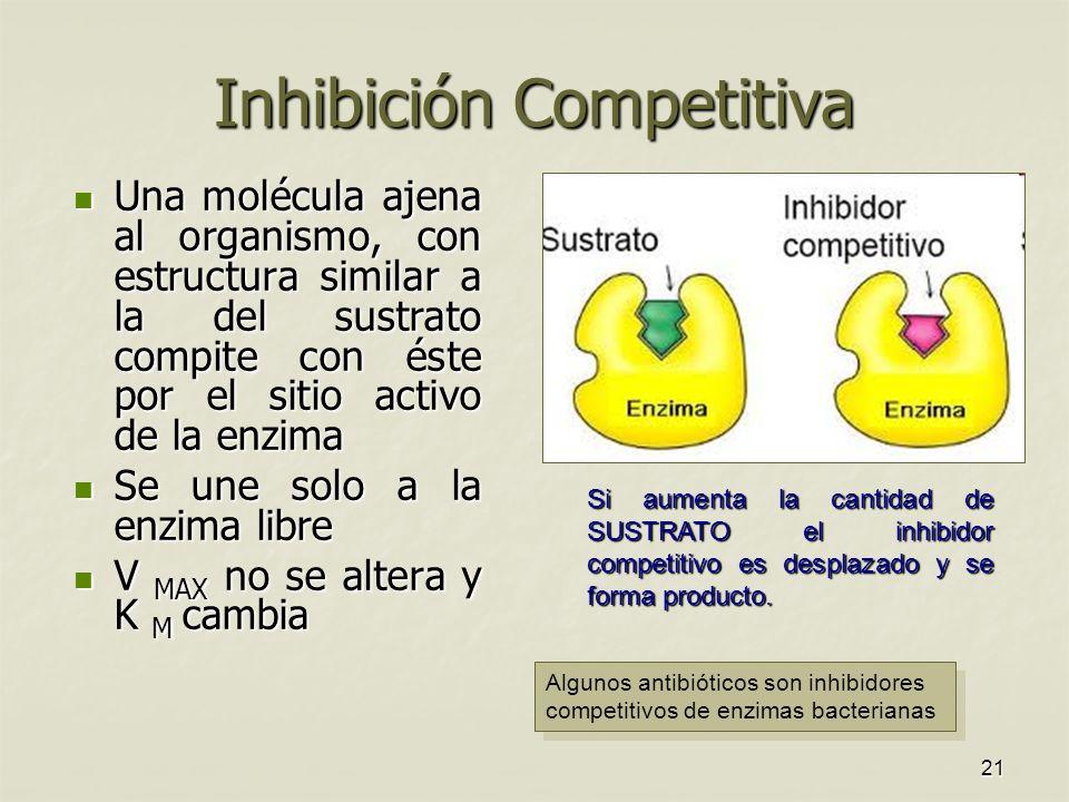 21 Inhibición Competitiva Una molécula ajena al organismo, con estructura similar a la del sustrato compite con éste por el sitio activo de la enzima Una molécula ajena al organismo, con estructura similar a la del sustrato compite con éste por el sitio activo de la enzima Se une solo a la enzima libre Se une solo a la enzima libre V MAX no se altera y K M cambia V MAX no se altera y K M cambia Si aumenta la cantidad de SUSTRATO el inhibidor competitivo es desplazado y se forma producto.