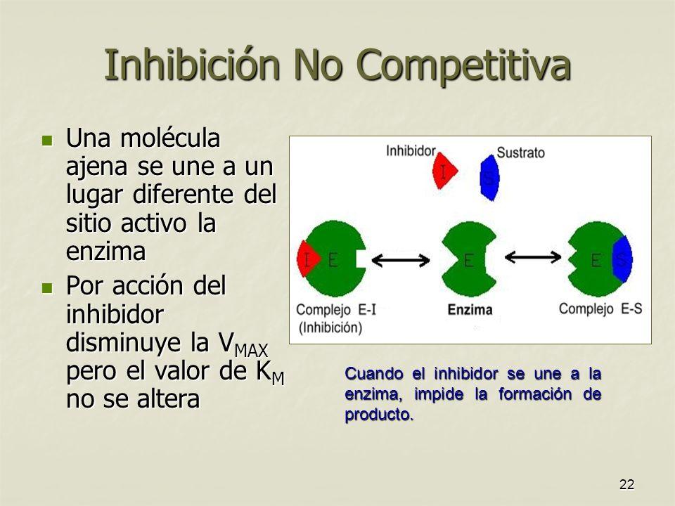 22 Inhibición No Competitiva Una molécula ajena se une a un lugar diferente del sitio activo la enzima Una molécula ajena se une a un lugar diferente del sitio activo la enzima Por acción del inhibidor disminuye la V MAX pero el valor de K M no se altera Por acción del inhibidor disminuye la V MAX pero el valor de K M no se altera Cuando el inhibidor se une a la enzima, impide la formación de producto.