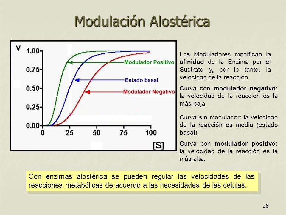 26 Modulación Alostérica Con enzimas alostérica se pueden regular las velocidades de las reacciones metabólicas de acuerdo a las necesidades de las células.
