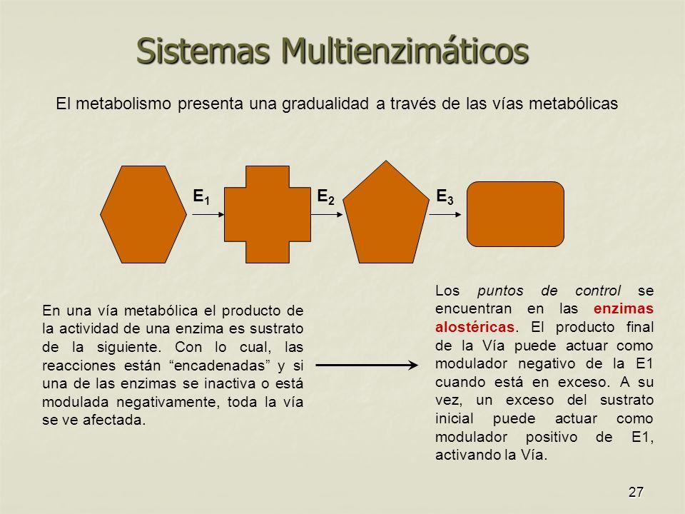 27 Sistemas Multienzimáticos E1E1 E2E2 E3E3 En una vía metabólica el producto de la actividad de una enzima es sustrato de la siguiente.