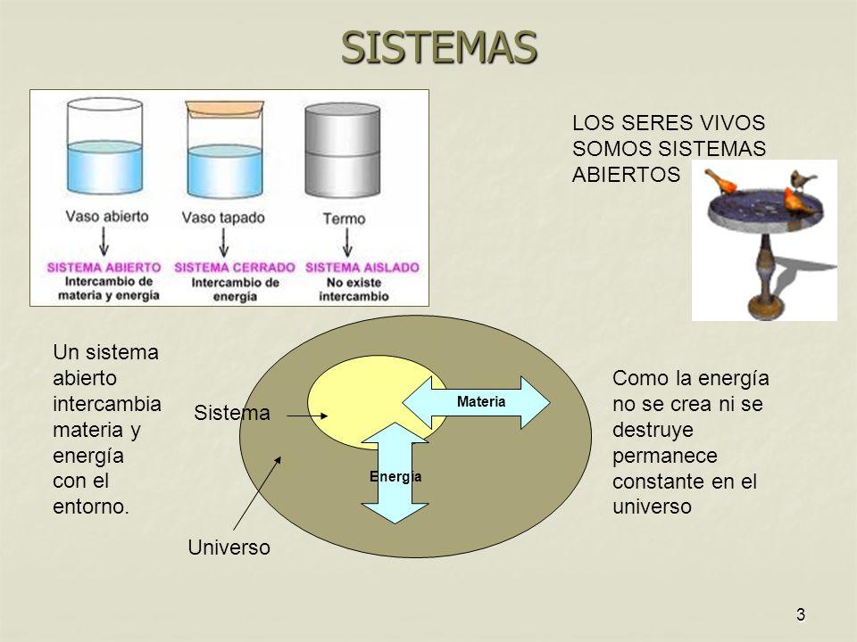 3 SISTEMAS LOS SERES VIVOS SOMOS SISTEMAS ABIERTOS Universo Sistema Un sistema abierto intercambia materia y energía con el entorno. Materia Energía C